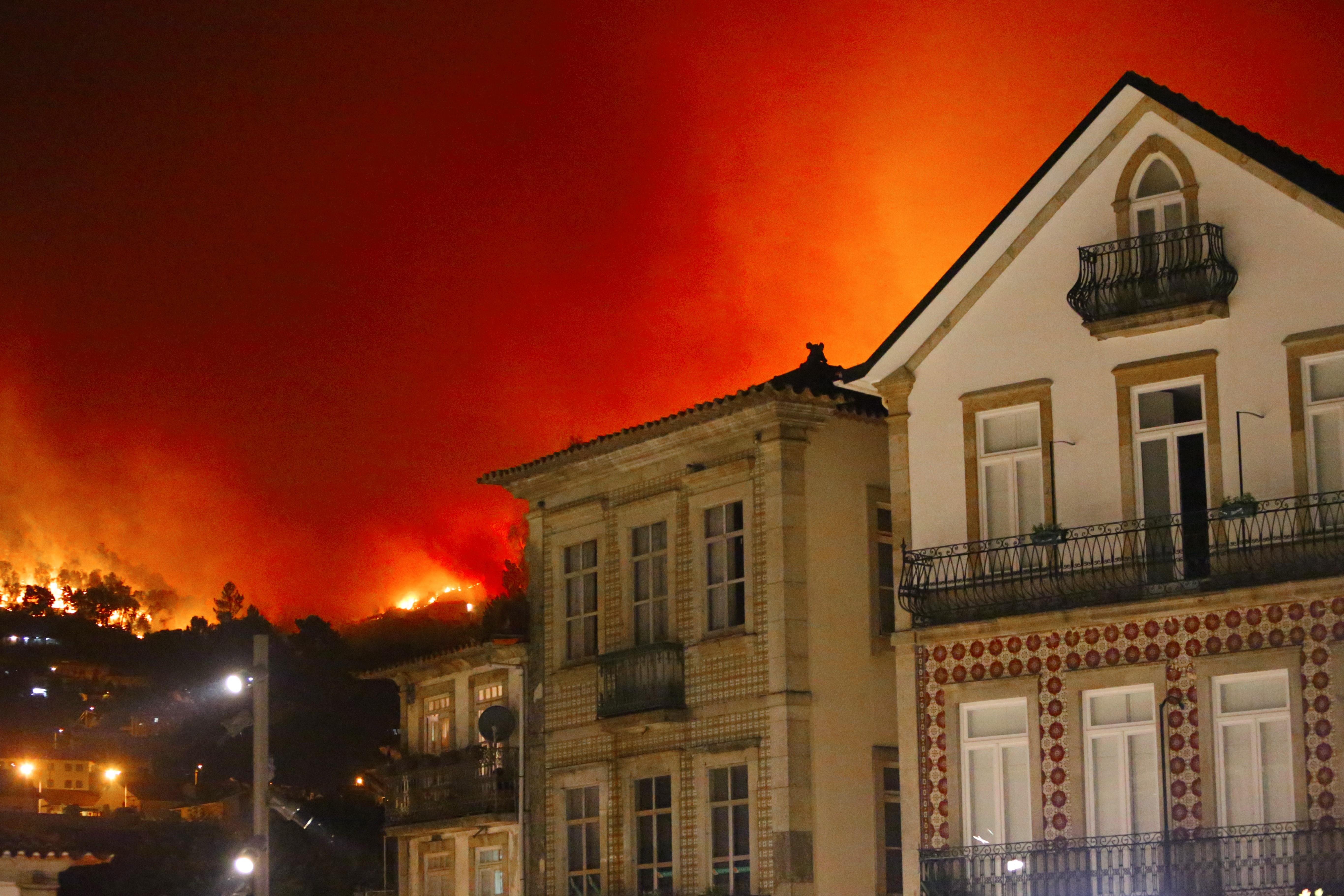 INCÊNDIOS: O que fazer depois do grande fogo?