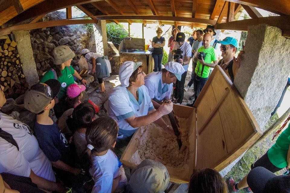 Festa da Broa de Milho de Paraduça atraiu centenas de pessoas