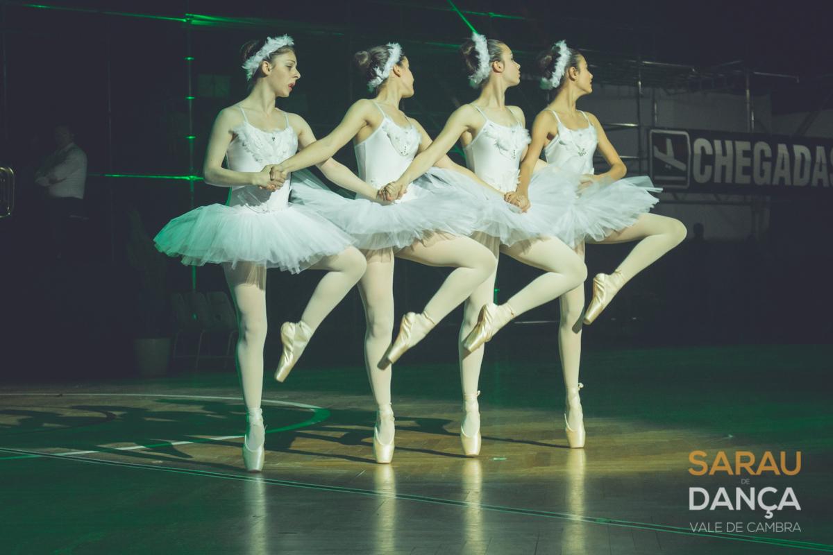 Arouca e Vale de Cambra assinalaram Dia Mundial da Dança com espetáculos grandiosos