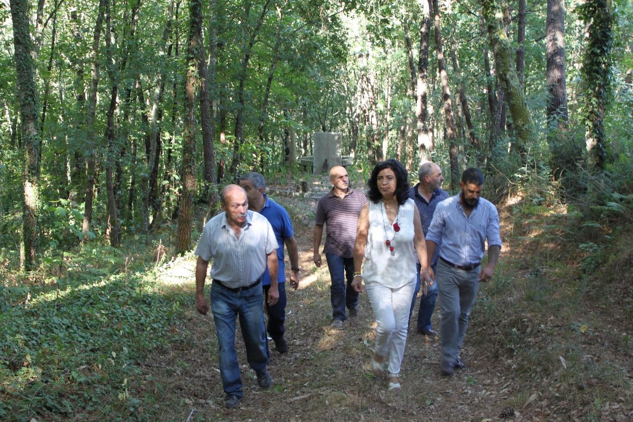 Floresta continua a dominar agenda da candidatura de Margarida Belém
