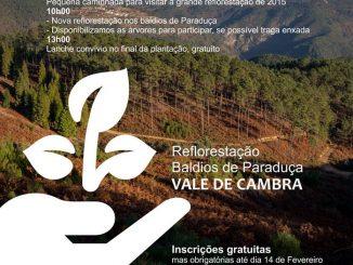 Ação de reflorestação nos Baldios de Paraduça