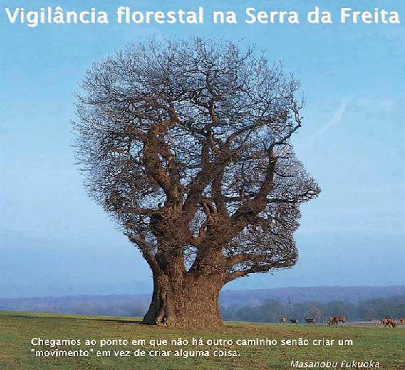 Está aberto o Programa de Voluntariado Ambiental 'Vigilância Florestal na Serra da Freita 2018'