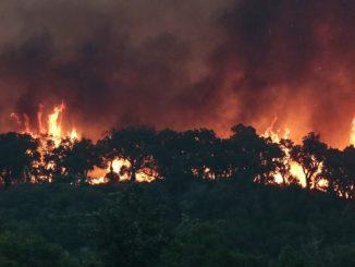 Governo autorizou reabilitação das casas danificadas pelos incêndios em Arouca, Castelo de Paiva e Monção