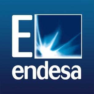 Câmara adjudica fornecimento de energia elétrica à Endesa