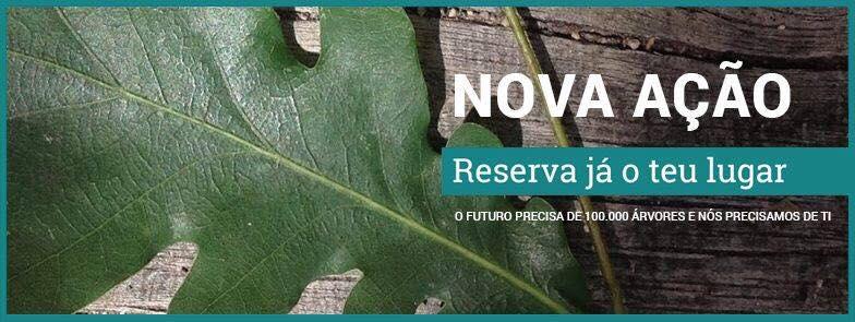 Vale de Cambra promove plantação de 1400 árvores