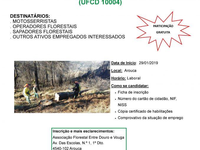 Associação Florestal Entre Douro e Vouga promove formação gratuita 'Operação com Motosserra em Segurança'