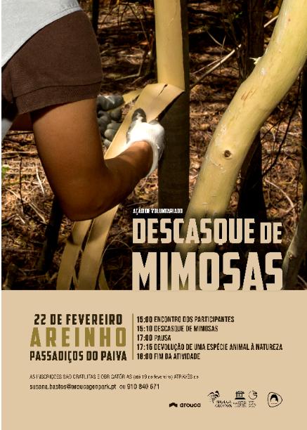 AGA promove ação de voluntariado 'Descasque de mimosas'