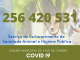 Covid-19: Vale de Cambra cria novo serviço que ensina como agir com os animais estimação