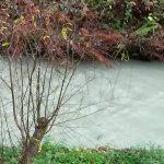 Poluição no rio Arda causa indignação