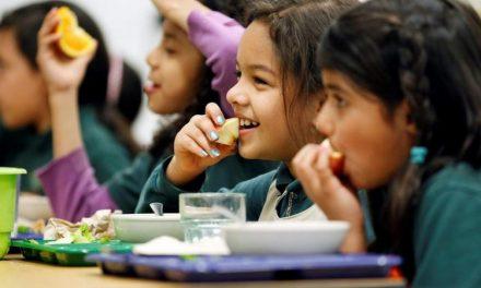 Câmara de Oliveira de Azeméis fornece 146 refeições diárias a alunos carenciados