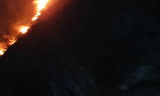 Fogo deflagra Junto ao Parque de MERENDAS VALE DE RAÍZ NA SERRA DA FREITA
