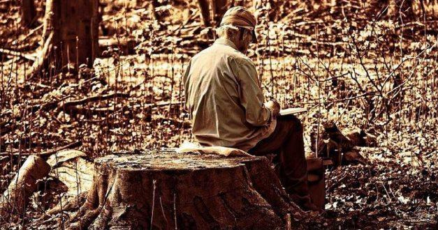 44% Dos Proprietários Não Limpam Terrenos, 31% Porque Não Tem Dinheiro