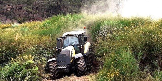 Limpeza de terrenos florestais tem de estar feita até 15 de março. Coimas duplicaram. ICNF ajuda com sapadores florestais