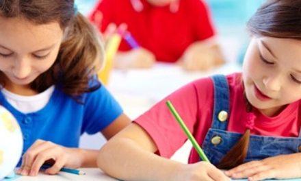 VALE DE CAMBRA: Isenção para as famílias que têm atividades de apoio no pré-escolar