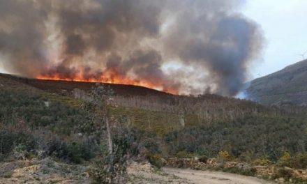 Incêndio de Grande Intensidade em Alvarenga
