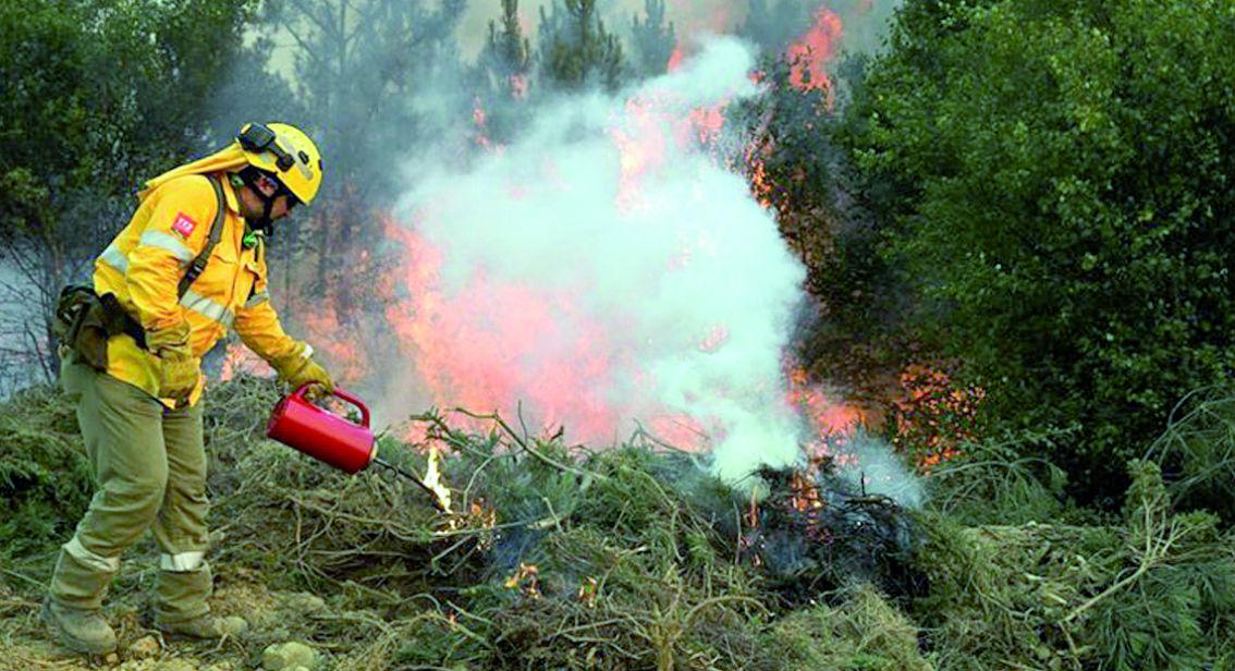 Equipa de Elite dos Bombeiros de Arouca e AGIF realizam, hoje, fogo controlado no Planalto da Freita