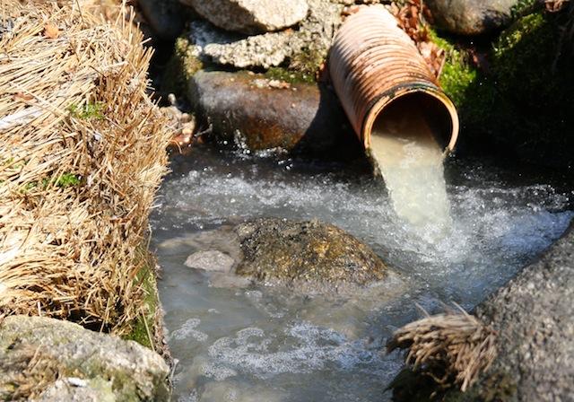 SOS Rio Paiva lança petição pelo fim das descargas poluentes rio