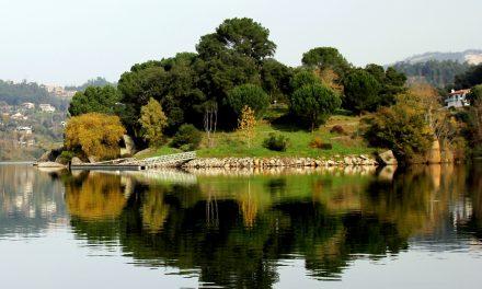 Castelo de Paiva apresenta a maior incidência de casos de Covid-19 da Região do Tâmega e Sousa