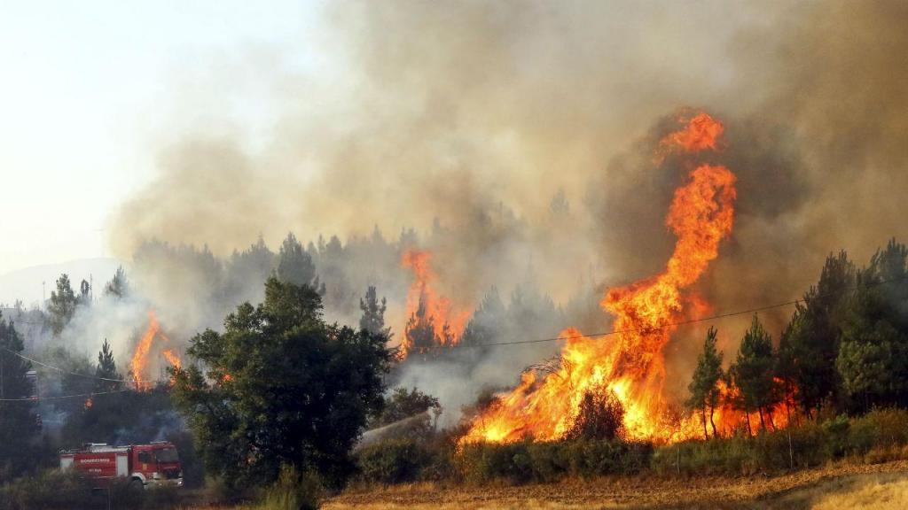Incêndio dominado em Castelo de Paiva