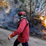 Como está a região a preparar a época de fogos que se aproxima