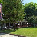 Vale de Cambra faz campanha e alerta para a violência contra os idosos