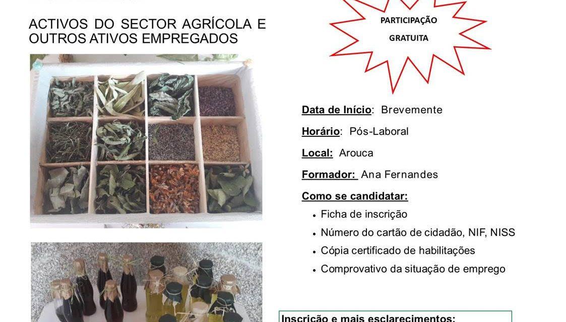 """Associação Florestal """"Entre Douro e Vouga"""" vai realizar formação """"Compotas, conversas, licores e aromáticas"""""""